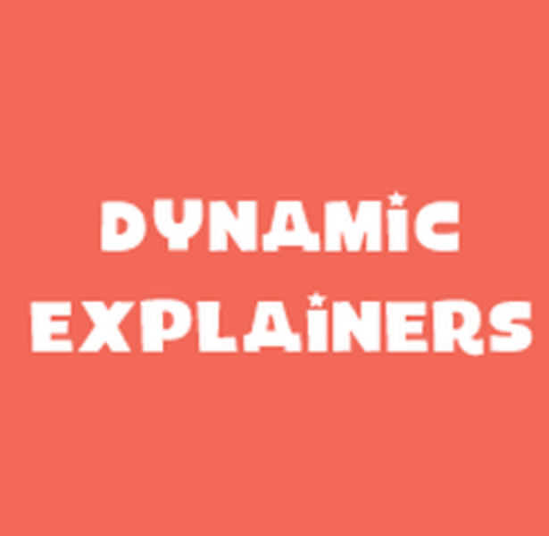 Dynamic Explainers