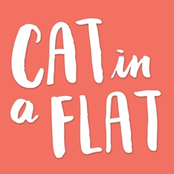 Cat in a Flat