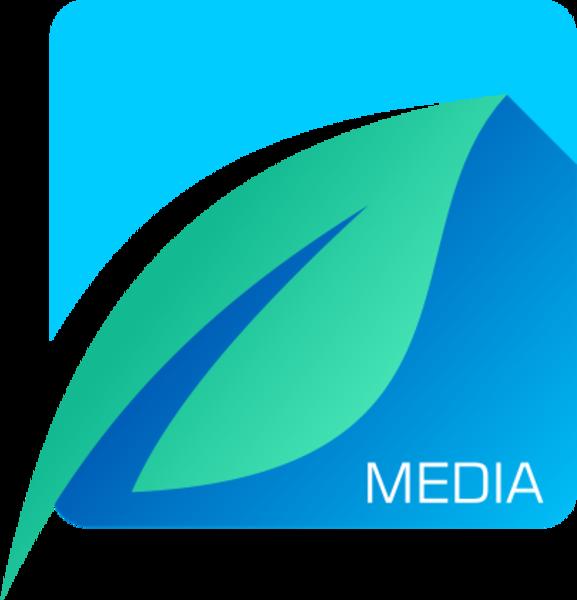Icemint Media