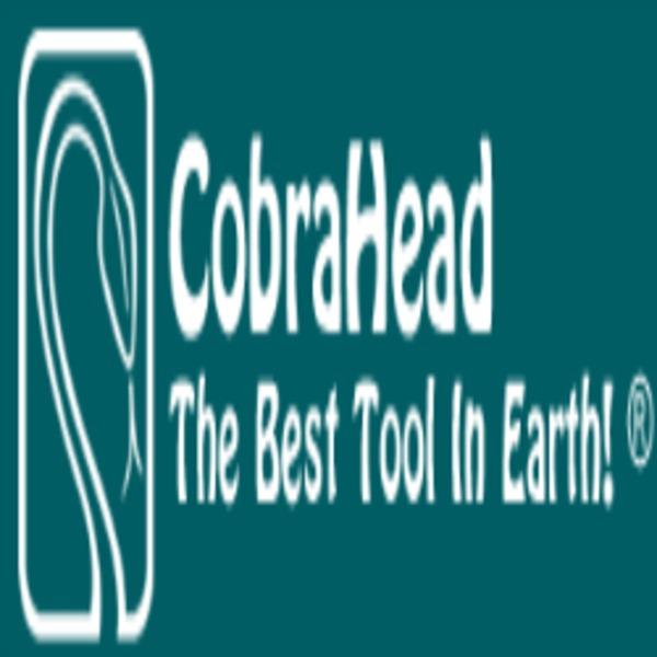 CobraHead LLC