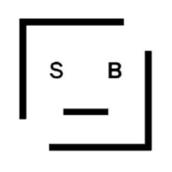 SurveyBot