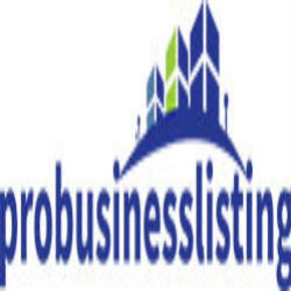 Pro Business Listing